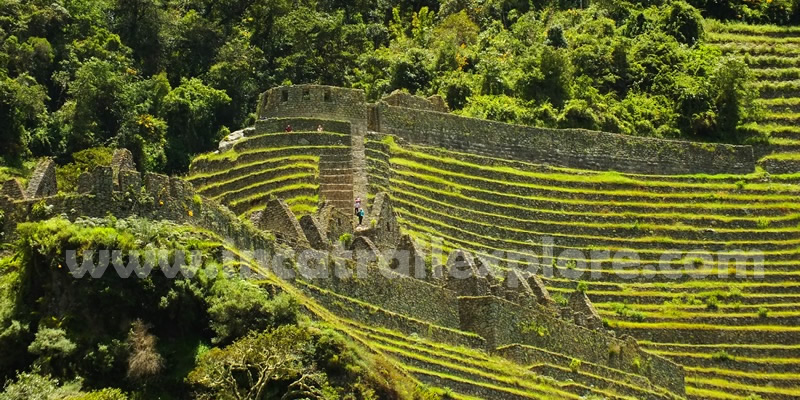 Inca Trail 4 day trek Machu picchu Winayhuayna